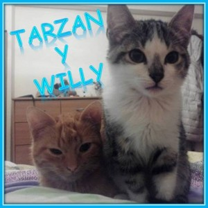 Tarzan y Willy web