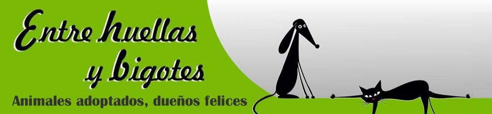 ENTRE HUELLAS Y BIGOTES